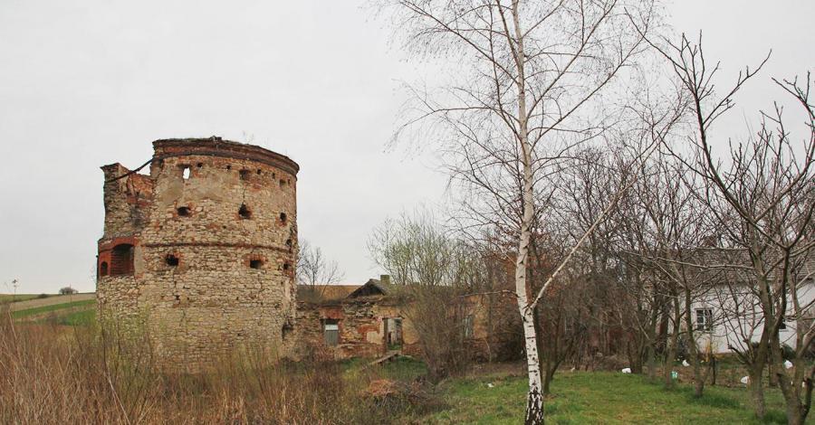 Ruiny zamku w Pruchniku - zdjęcie