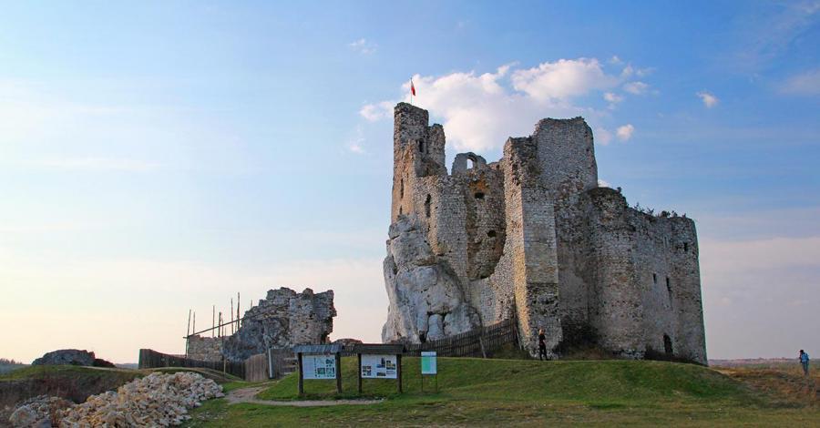 Zamek w Mirowie, Anna Piernikarczyk