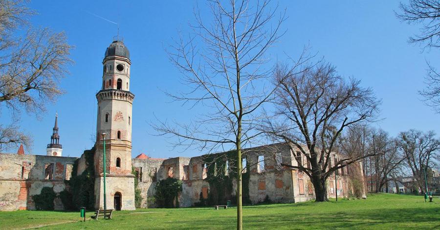 Zamek w Strzelcach Opolskich - zdjęcie