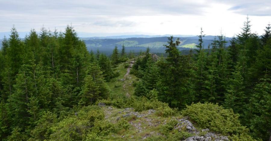 Kopieniec Wielki w Tatrach - zdjęcie