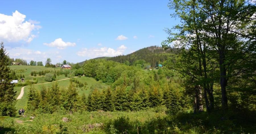 Przełęcz Przegibek - zdjęcie