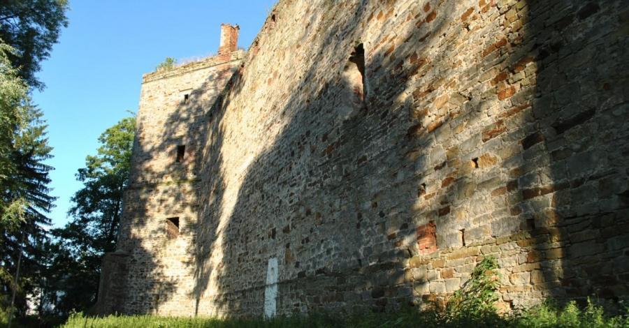Zamek w Drzewicy - zdjęcie