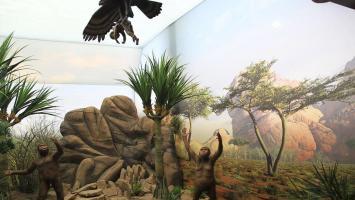 Park Nauki i Ewolucji Człowieka - relacja z otwarcia - zdjęcie