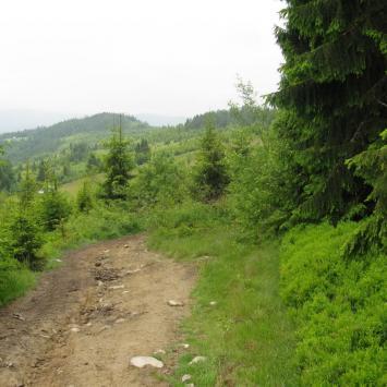 wycieczka górska - Gorce 2014