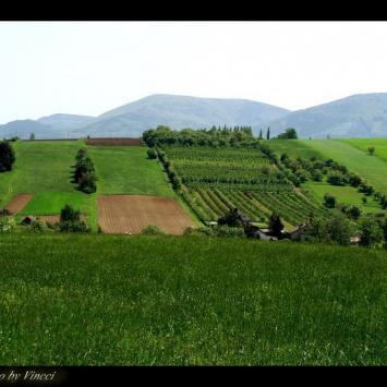 Pogórze Cieszyńskie: PUŃCÓW - zdjęcie