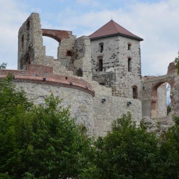 Gliniak w Bolęcinie i Zamek Tenczyn w Rudnie