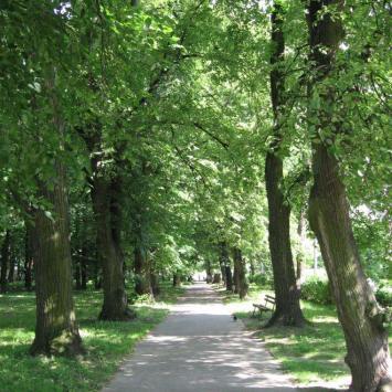 Park Miejski w Sandomierzu