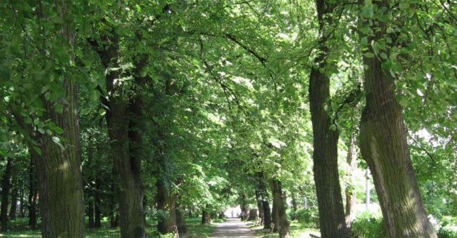 Park Miejski w Sandomierzu - zdjęcie