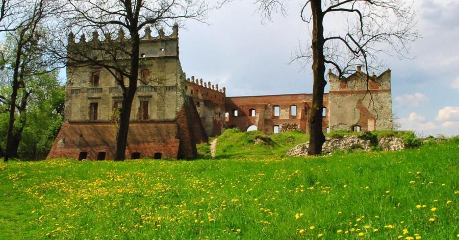 Zamek w Krupem - zdjęcie