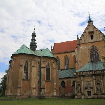 Kościół Wniebowzięcia NMP w Lubiążu, Anna Piernikarczyk