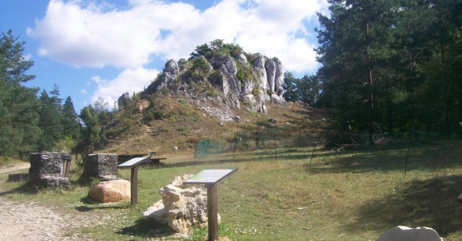 jura rezerwat góry zborów - zdjęcie