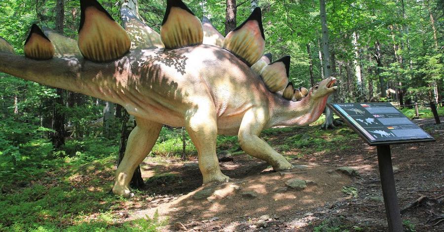 Dinopark w Szklarskiej Porębie - zdjęcie