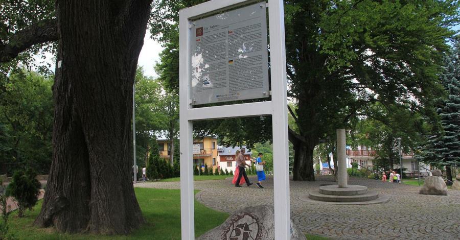 Lipa Sądowa w Karpaczu - zdjęcie