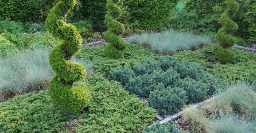 Ogrody Modelowe Dankowice - zdjęcie