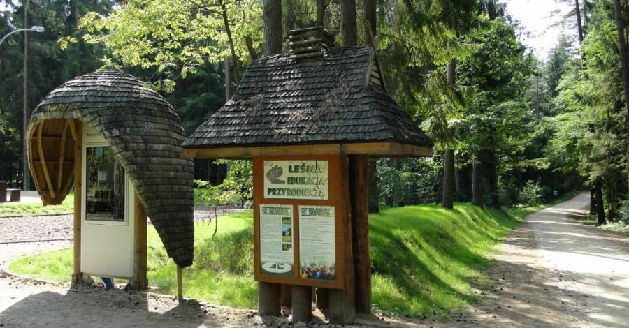 Park Krajobrazowy Puszczy Knyszyńskiej - zdjęcie
