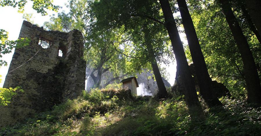 Zamek Gryf - zdjęcie
