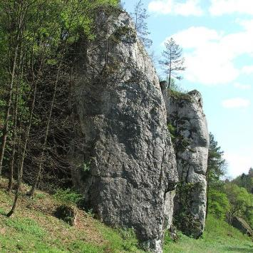 Wzdłuż Ojcowskiego Parku Narodowego
