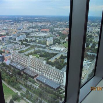 Sky Tower - zdjęcie