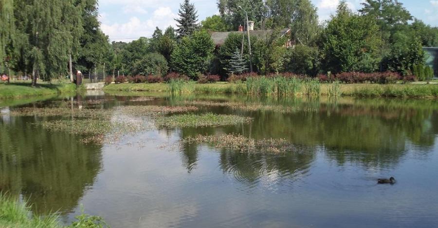 Park miejski w Kluczborku - zdjęcie