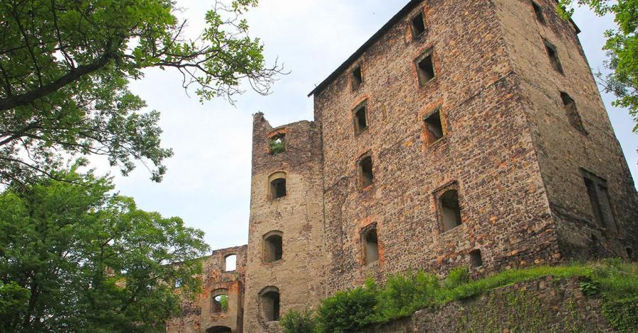 Zamek Świny - zdjęcie