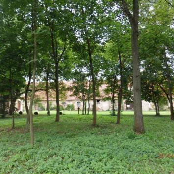 Park klasztorny w Obrze
