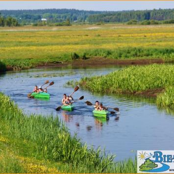 Spływy kajakowe rzeką Biebrzą