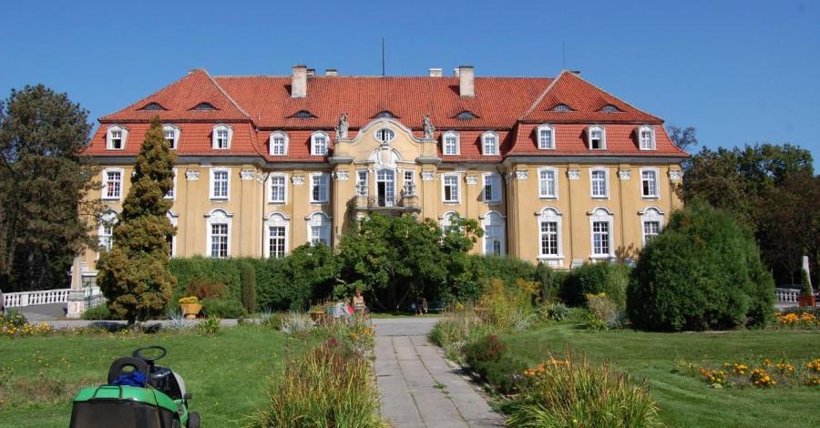 Pałac w Kochcicach.