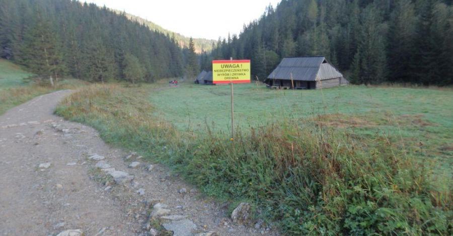Dolina Jaworzynka - zdjęcie