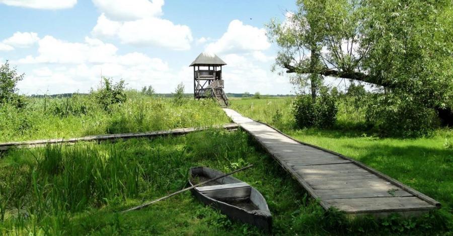 Kolonia Kaczorowo - zdjęcie