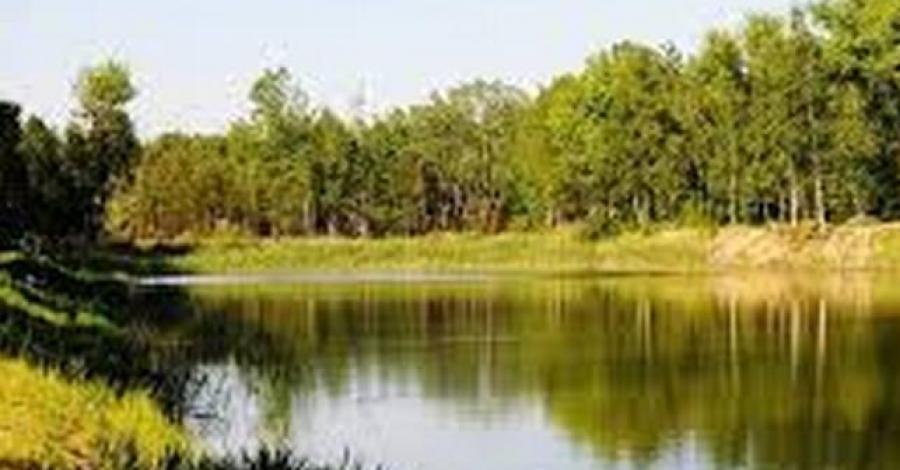 Ośrodek Rybaczówka w Sosnowcu - zdjęcie