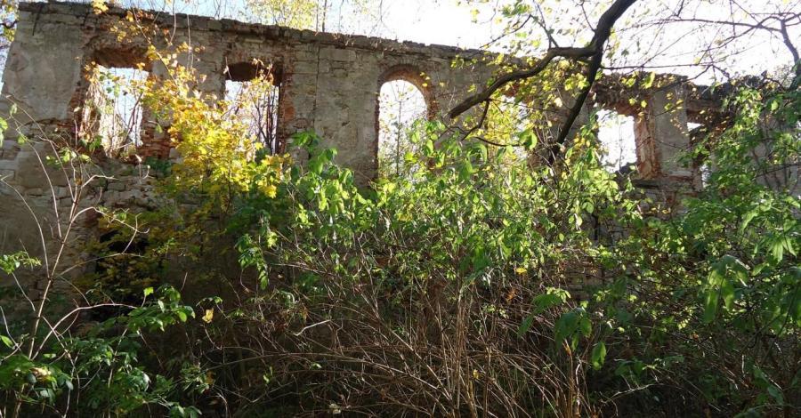 Pałac w Dębowym Gaju - zdjęcie