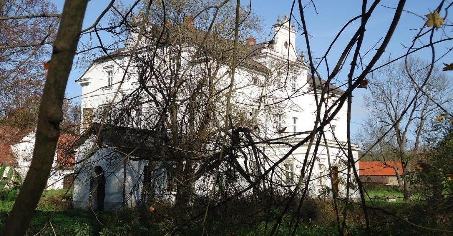 Pałac w Przeździedzy - zdjęcie