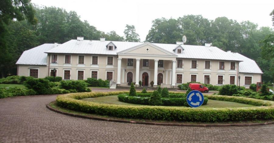 Pałac w Rytwianach, mokunka