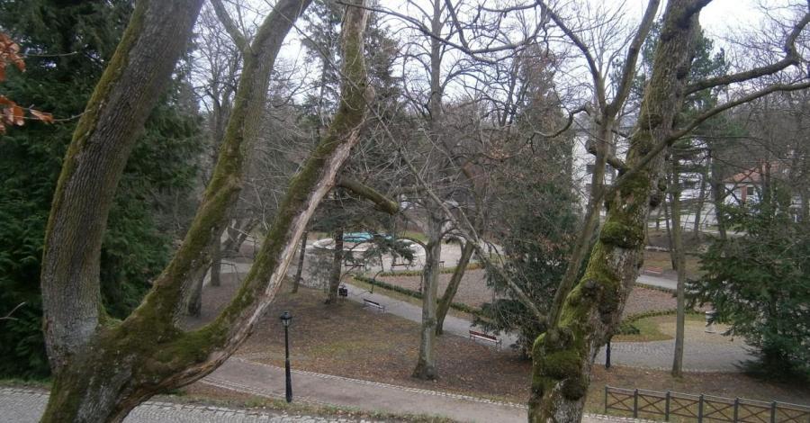 Park Książąt Pomorskich w Koszalinie - zdjęcie