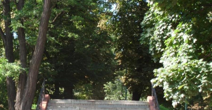 Park Miejski w Dzierżoniowie - zdjęcie