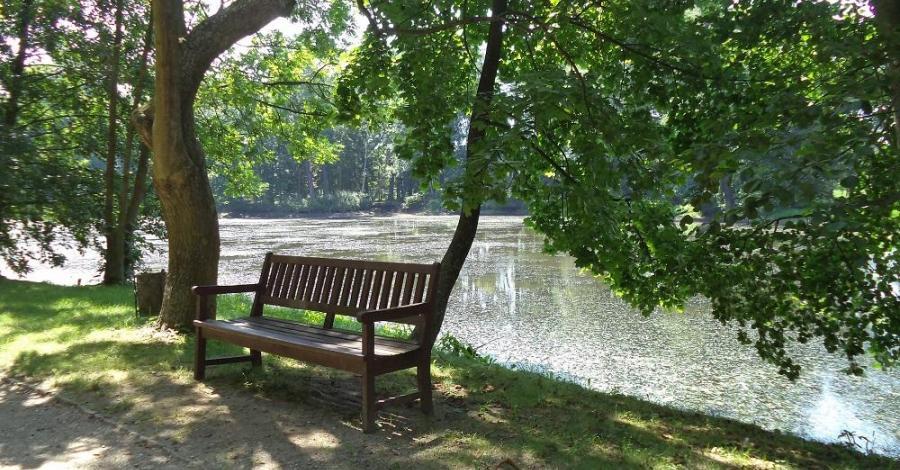 Park w Arkadii - zdjęcie