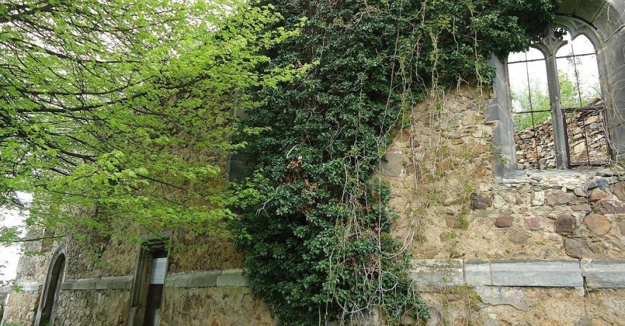 Ruiny kościoła Mariackiego w Rząsinach - zdjęcie