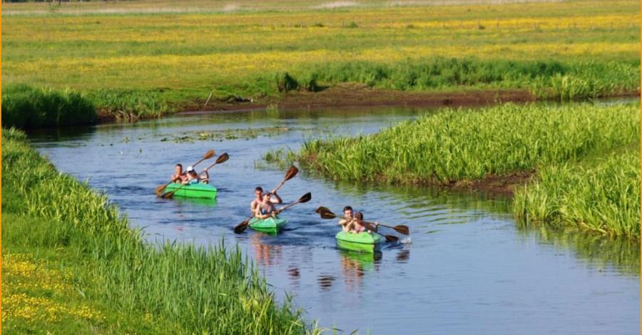 Spływy kajakowe rzeką Biebrzą - zdjęcie