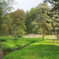 park w Świerklańcu