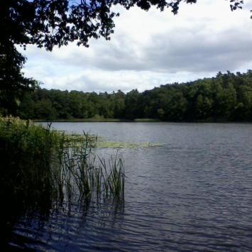 Jezioro Strzeszyńskie w Poznaniu