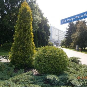 Park Waldorffa w Słupsku
