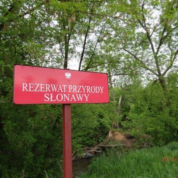Rezerwat Przyrody Słonawy