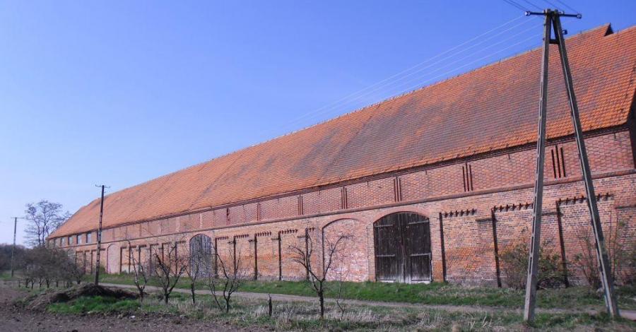 Folwark w Boguszynie - zdjęcie