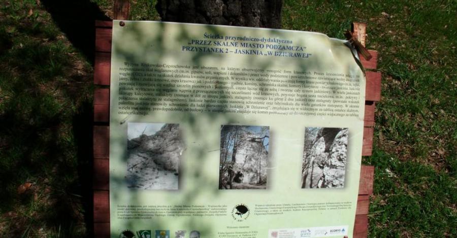 Jaskinia w Dziurawej w Ogrodzieńcu, mokunka