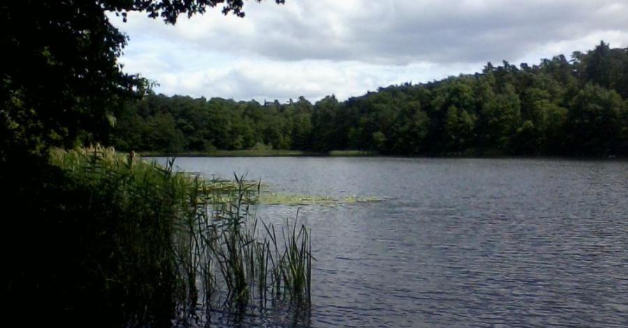 Jezioro Strzeszyńskie w Poznaniu - zdjęcie