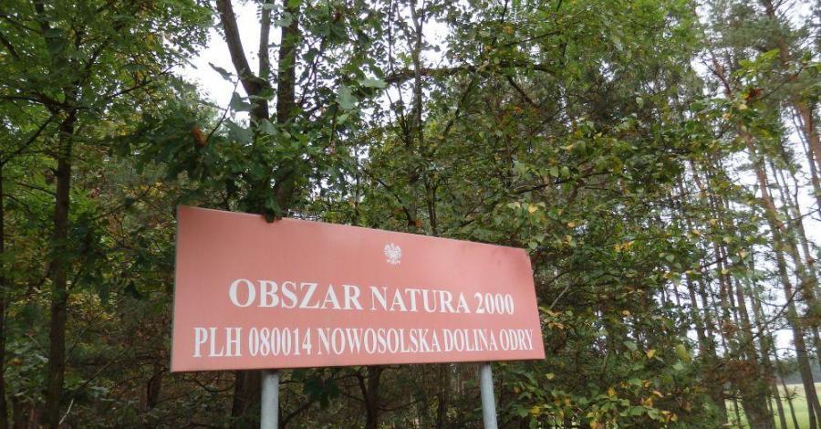 Nowosolska Dolina Odry - zdjęcie