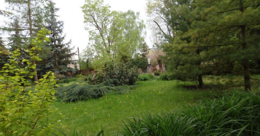 Park Chopina w Koninie - zdjęcie