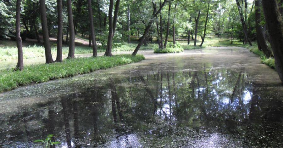 Park Kazimierza Wielkiego w Bydgoszczy - zdjęcie