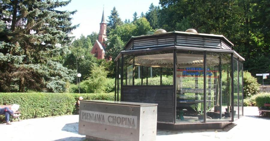 Pieniawa Chopina w Dusznikach Zdroju, mokunka