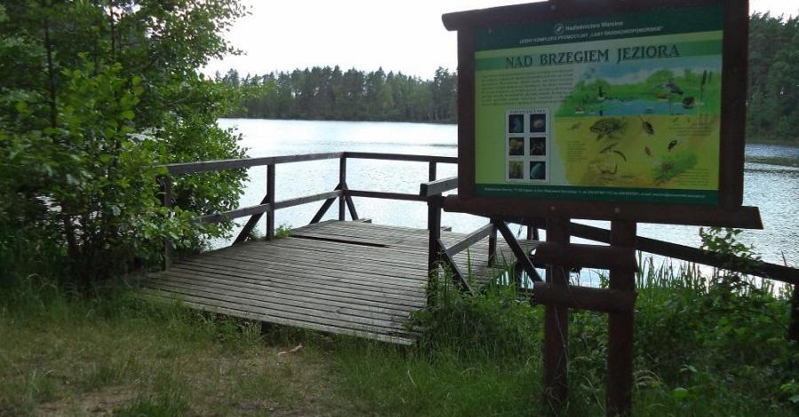 Ścieżka Nad jeziorem w Korzybiu - zdjęcie